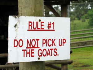 four new rules to live by