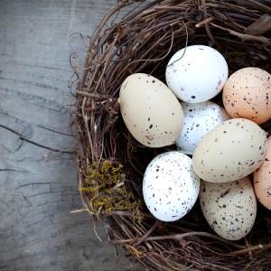 eggs_in-Basket_shutterstock_87023669